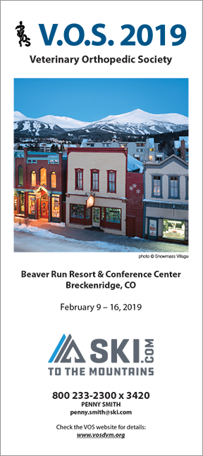 VOS-2019-conference-brochure-cover.png