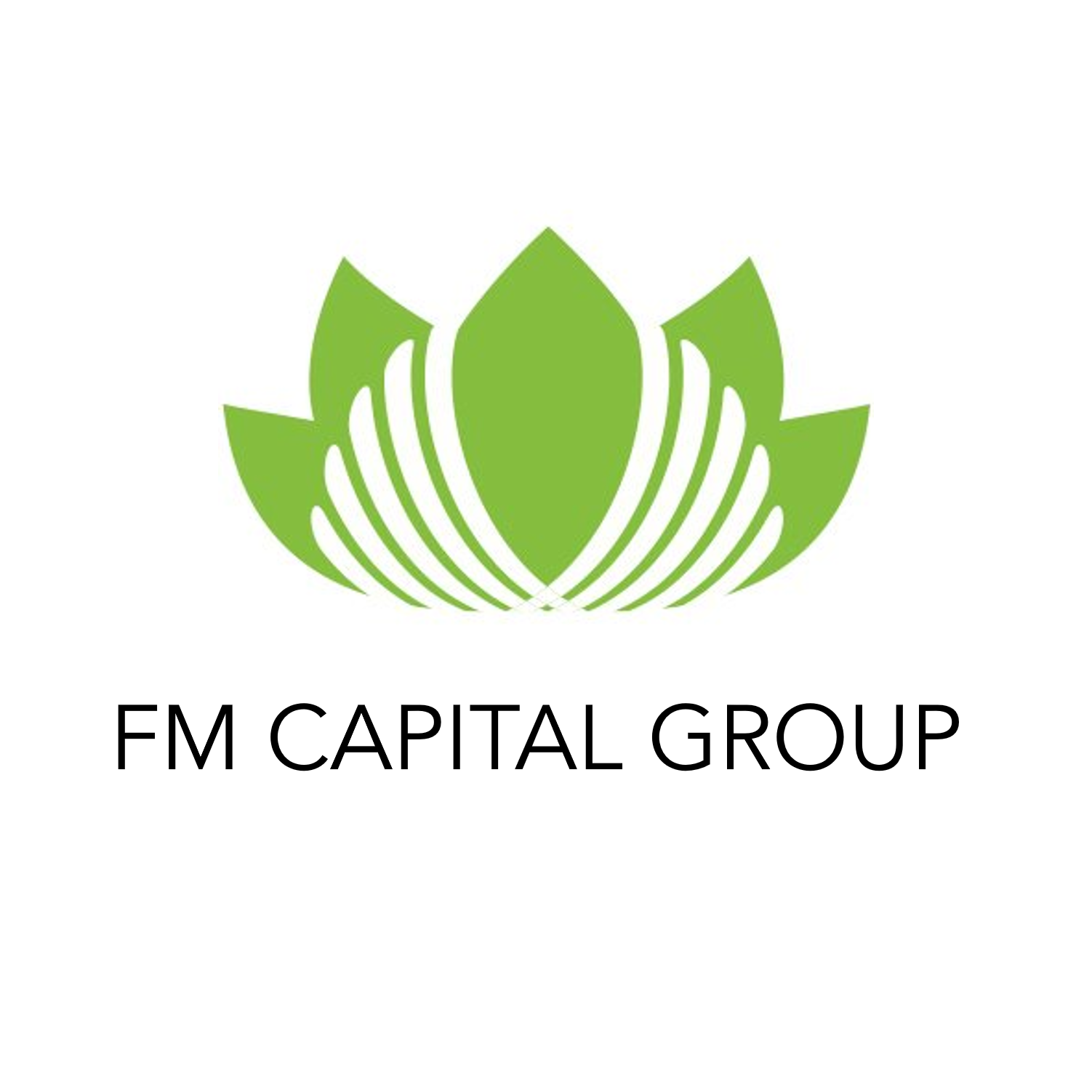 FMCAPITALGROUP.png