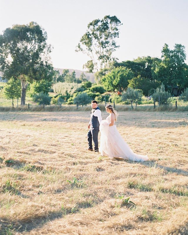 | the most dreamy | California light during Ryan and Alisha's wedding day! // scanned by @photovisionprints