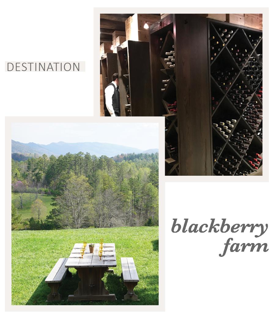 Travel to Blackberry Farm with Eileen Schlichting of Transatlantic Travel