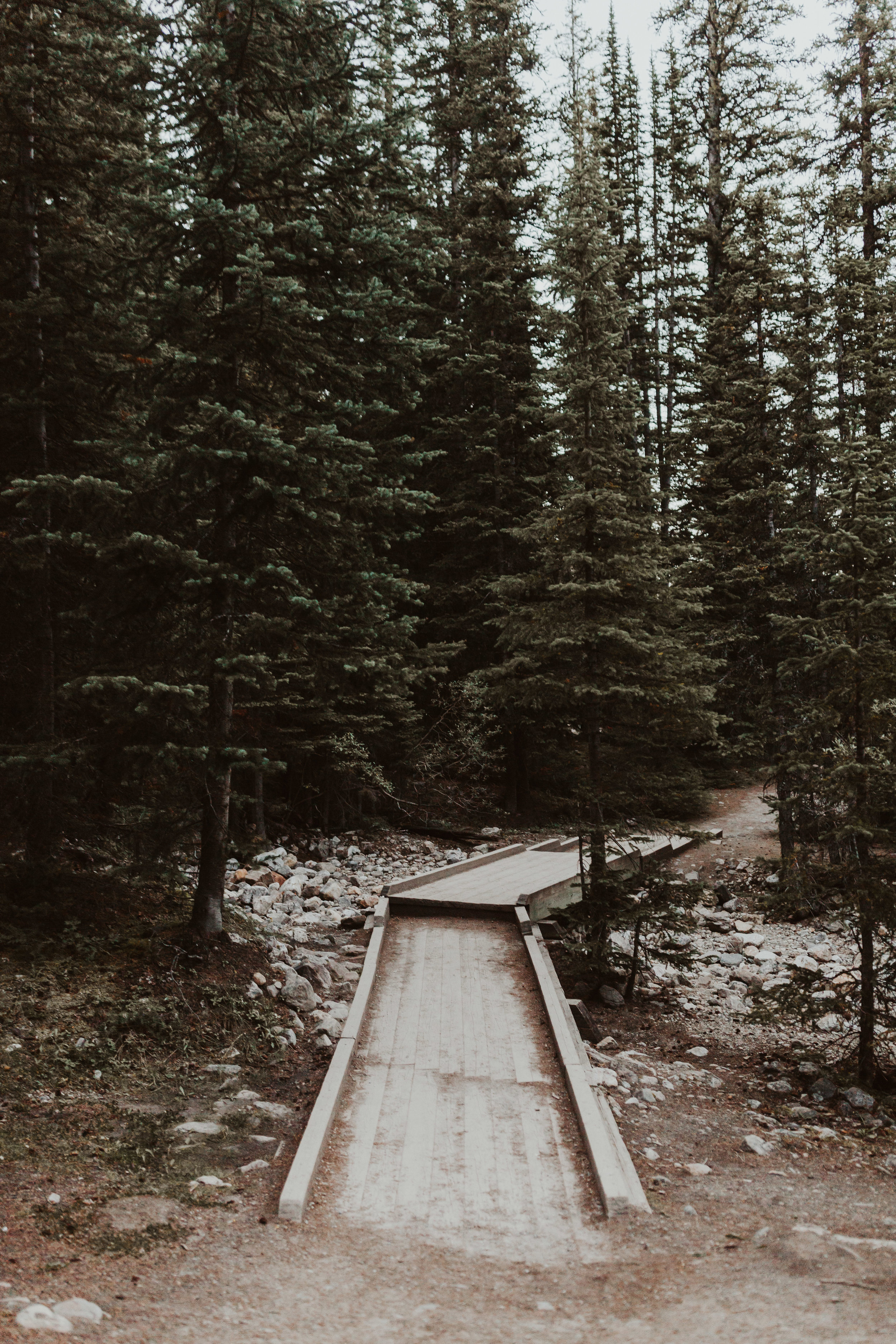 Jessie+Parker_Engagmenet_Banff_Canada-538.jpg