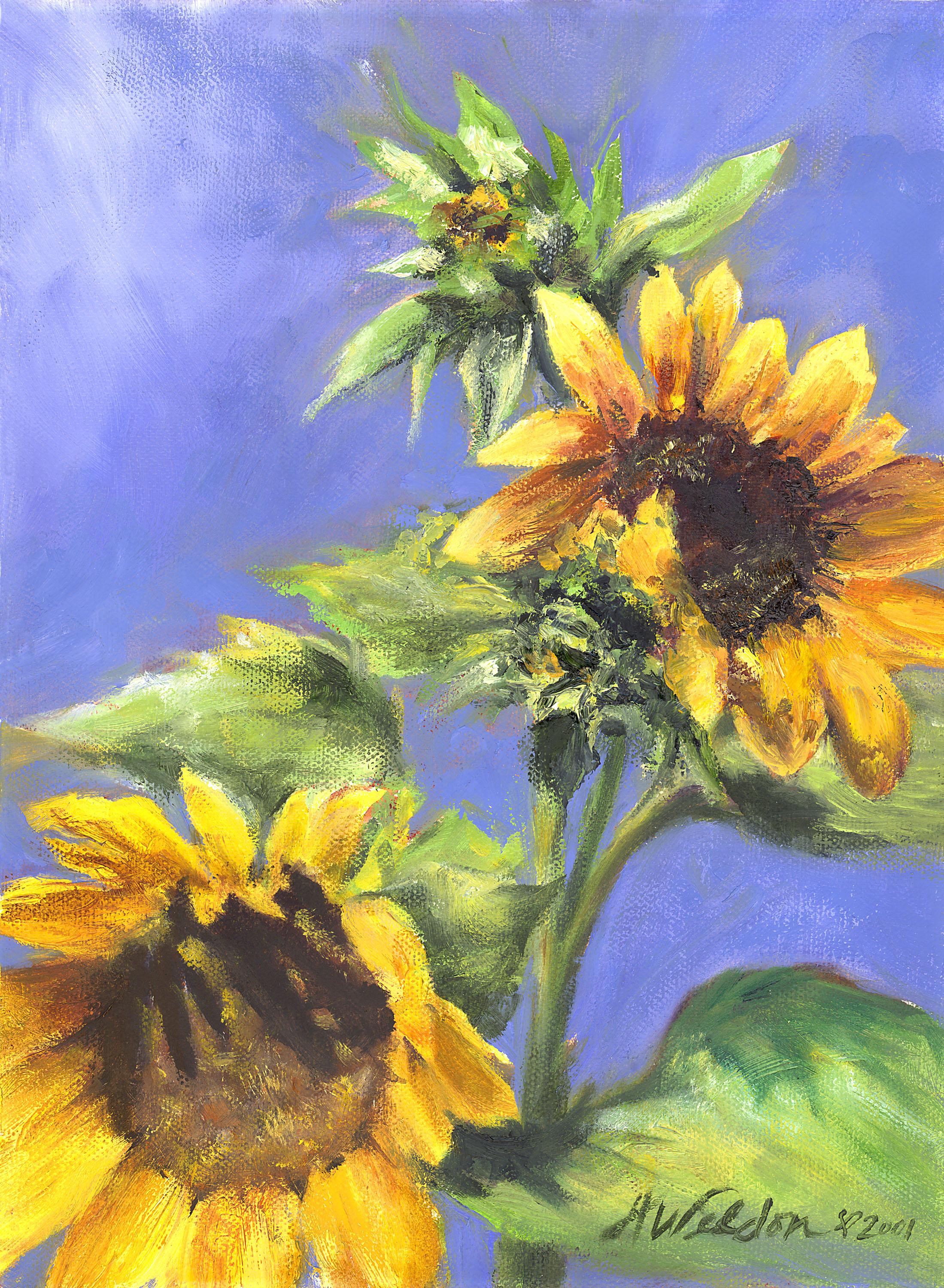 """Sunflower Joy"""