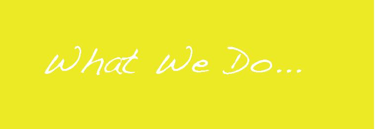 What we do2.jpg
