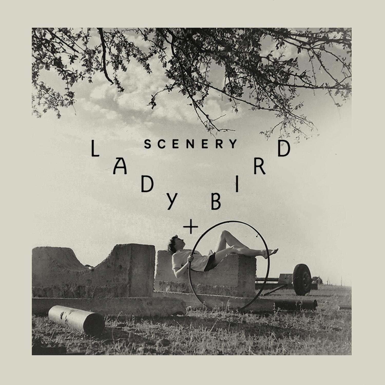 LadyBird_SpotifyArt4.jpg