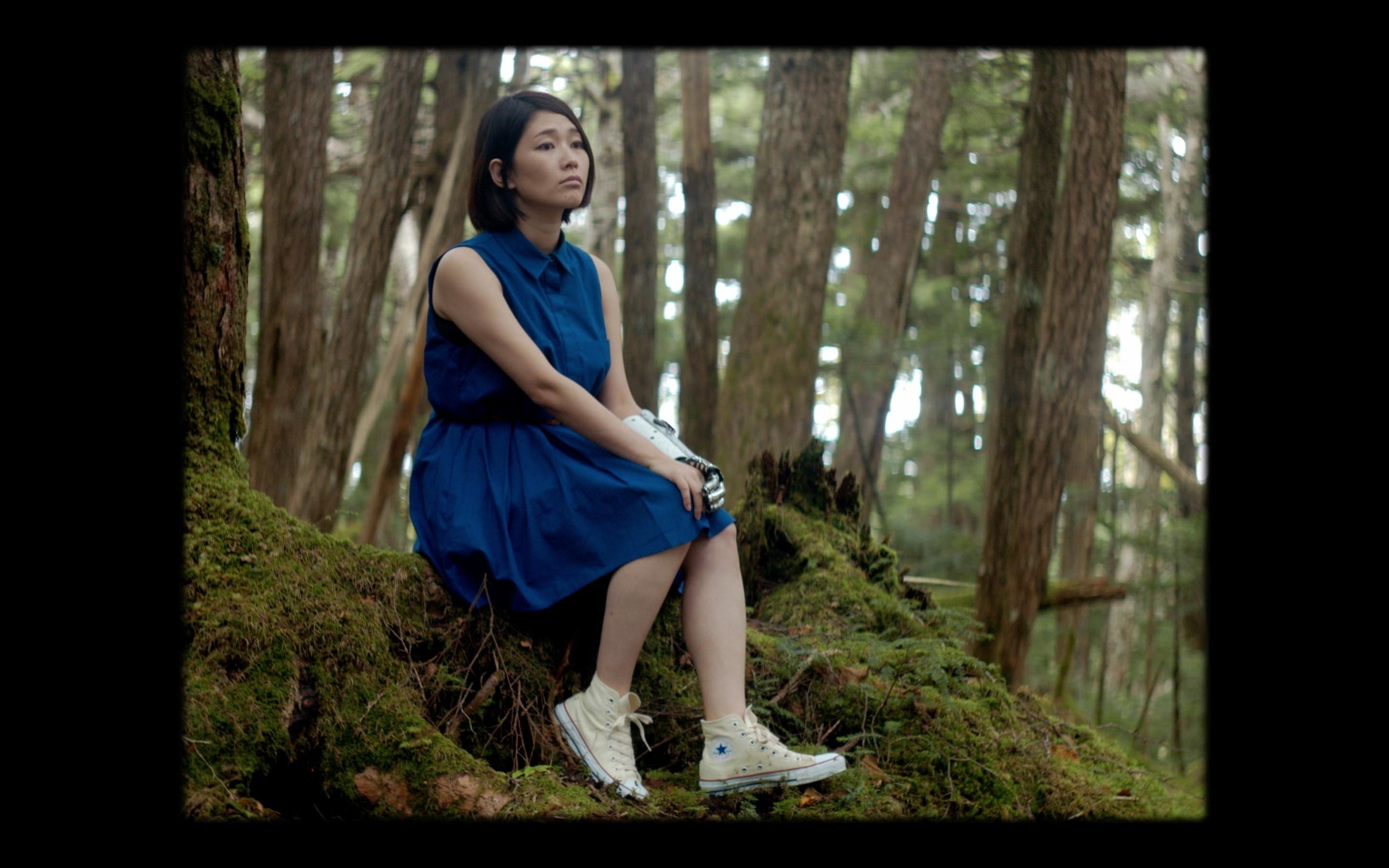 Forest Japan Dendro Blue Green Vans Cinematography Girl Tree