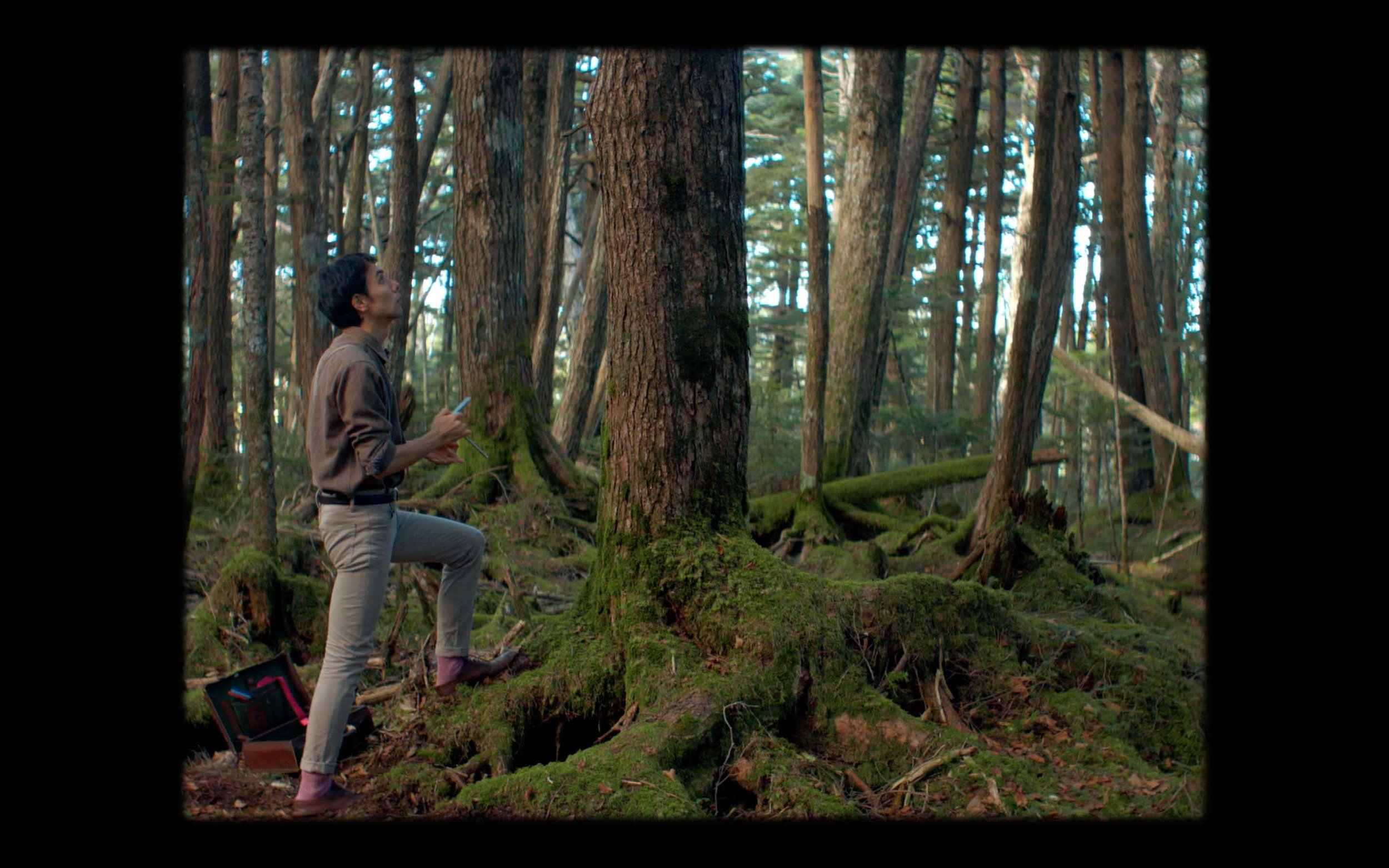 man forest japan tokyo naoshima travel cinematography dop cinematographer alexa red