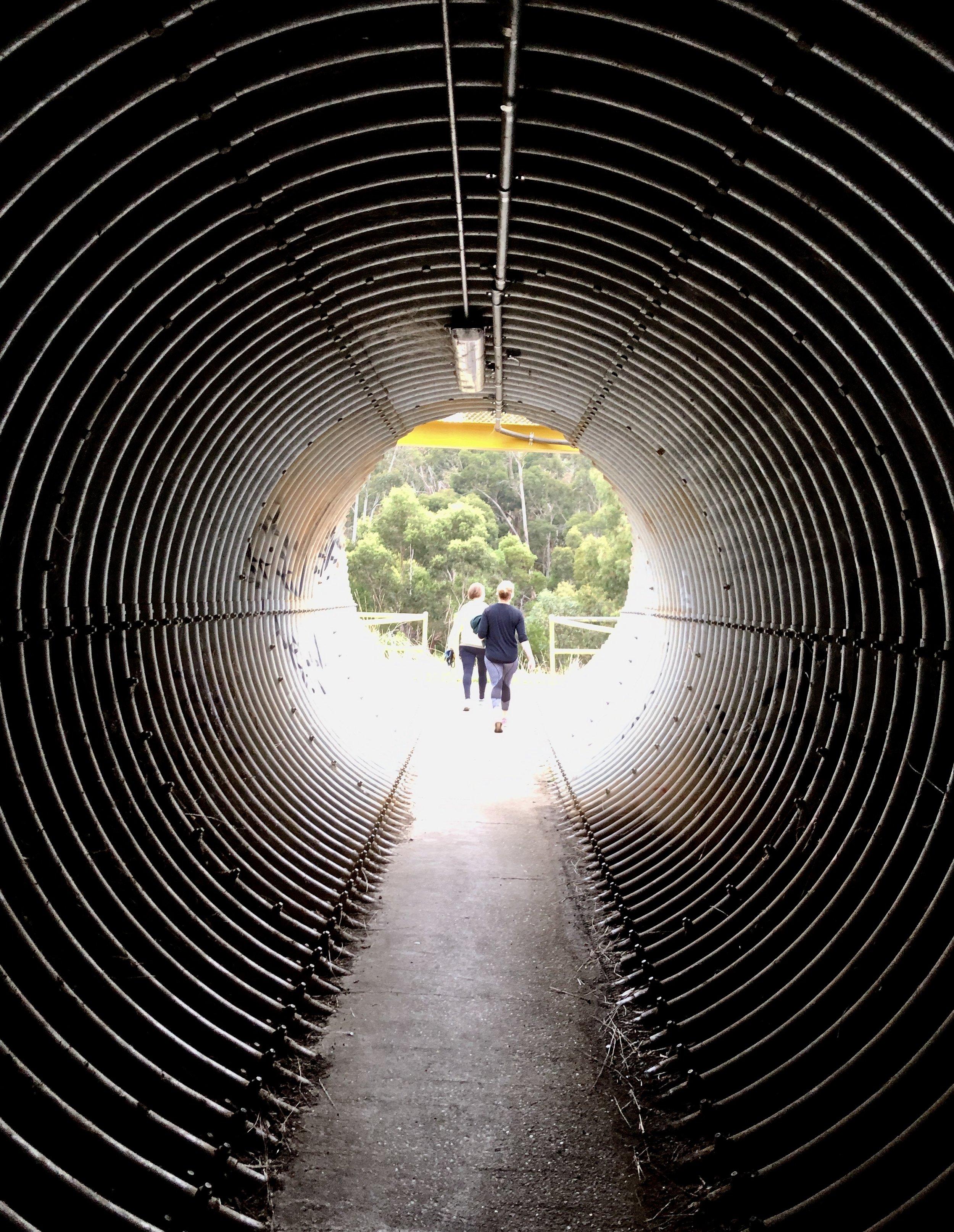 Yarrowee tunnel.jpg