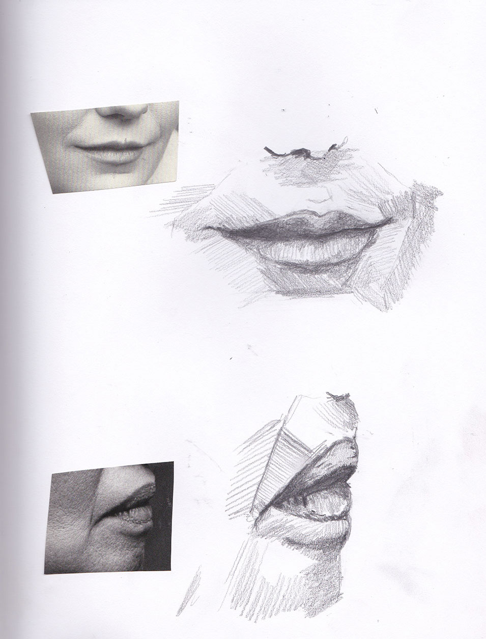 Feature Study - Lips