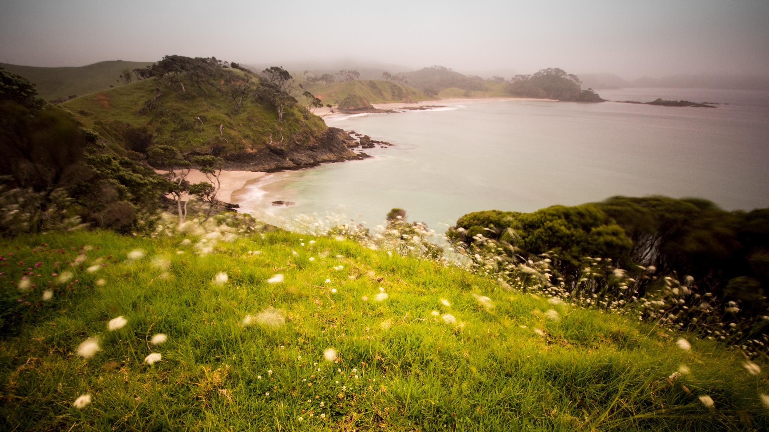 Elliott Bay.jpg