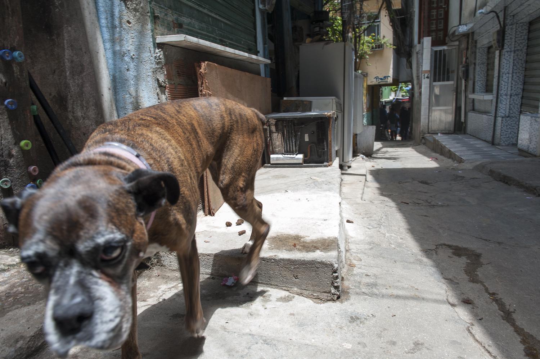 amee reehal favela rocinha (5 of 37).jpg