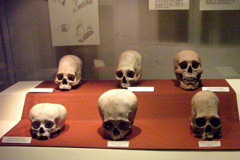 Museo-Nacional-de-Antropologia-Arqueologia-e-Historia-del-Peru_df177d797a7ce213a29bc39d9db1003e57ec6c7f.jpg