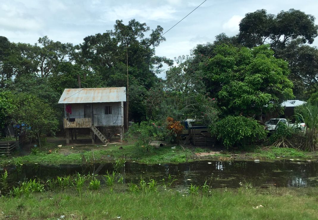 Country living Guayas Ecuador.jpg