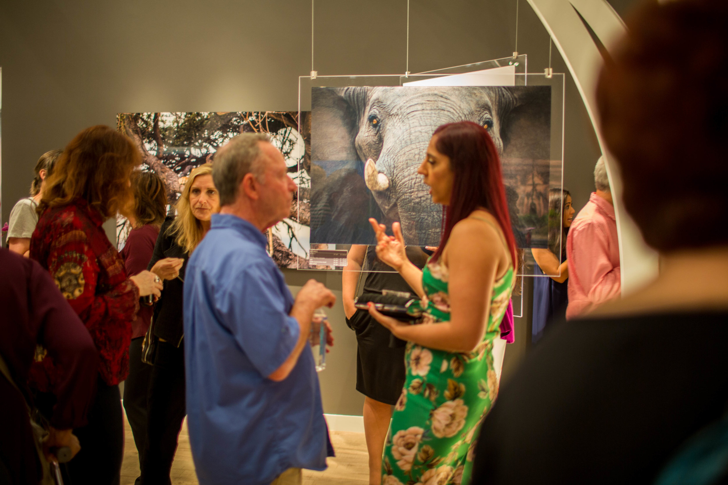 Photography Opening for SCLM-85.jpg