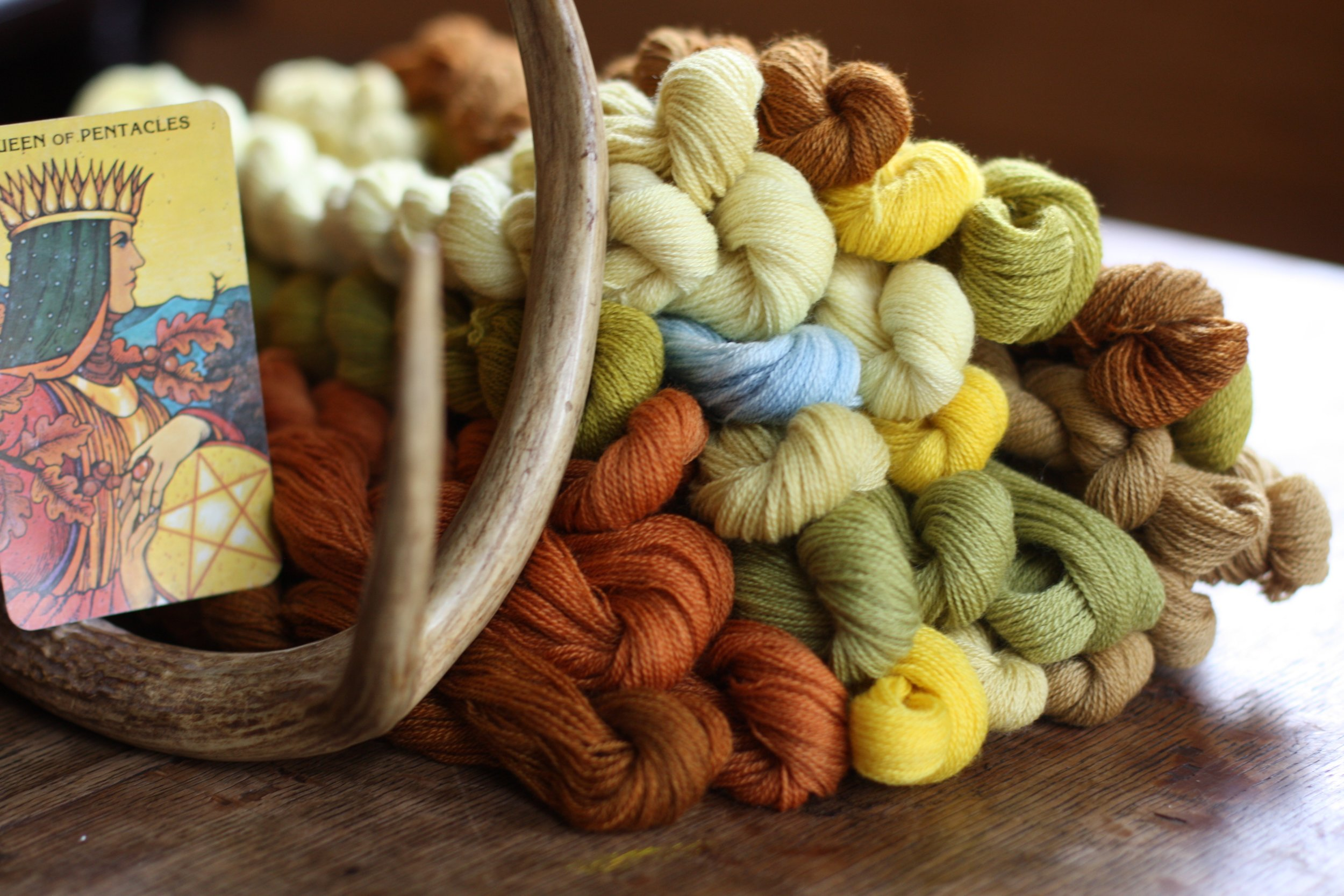 Skeins of naturally dyed wool and the Queen of Pentacles tarot card | 14 Mile Farm Handweaving