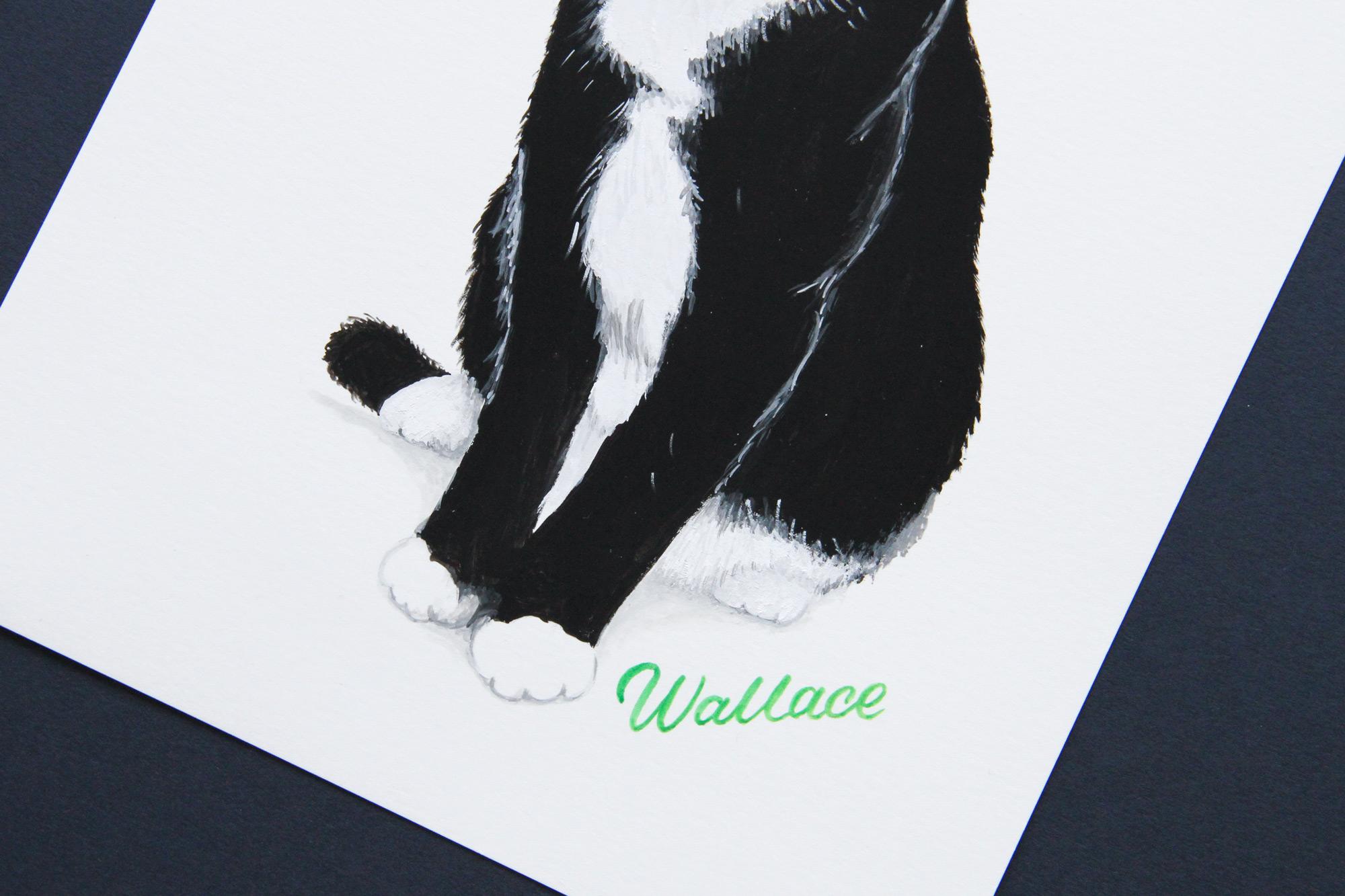 RM_Kitty_1.jpg