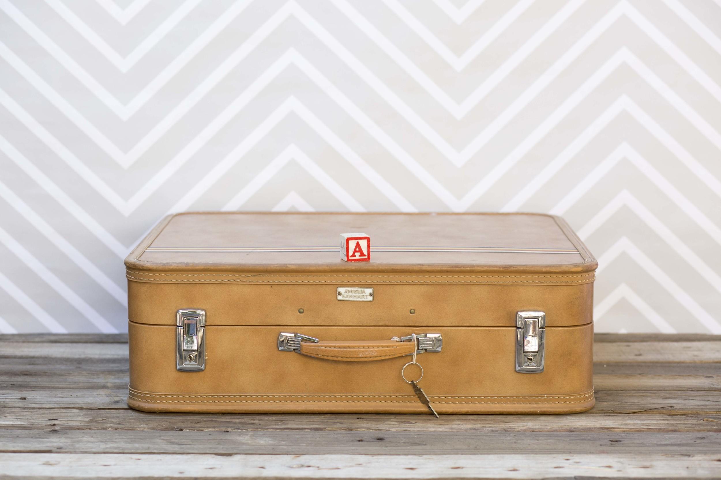 SuitcaseSample328A4999.jpg