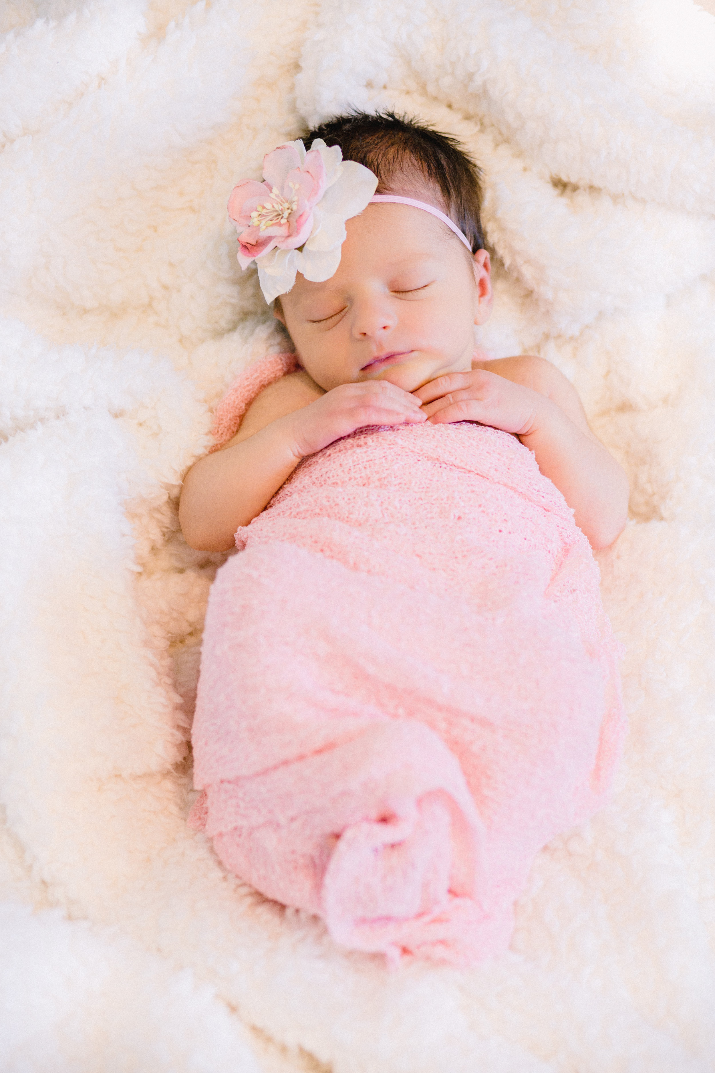 ALacey_Michelle_Photography_LR-9284.jpg