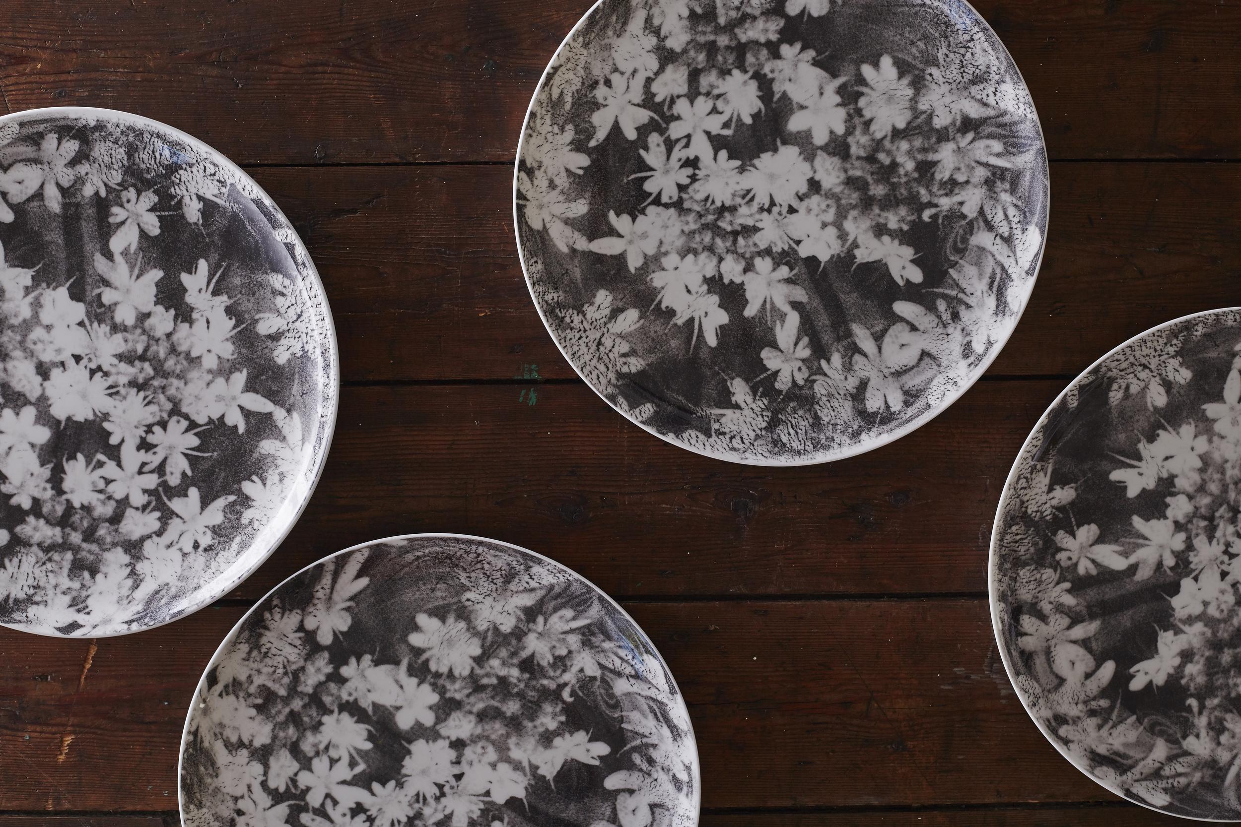 Wood Anemone dinner plates