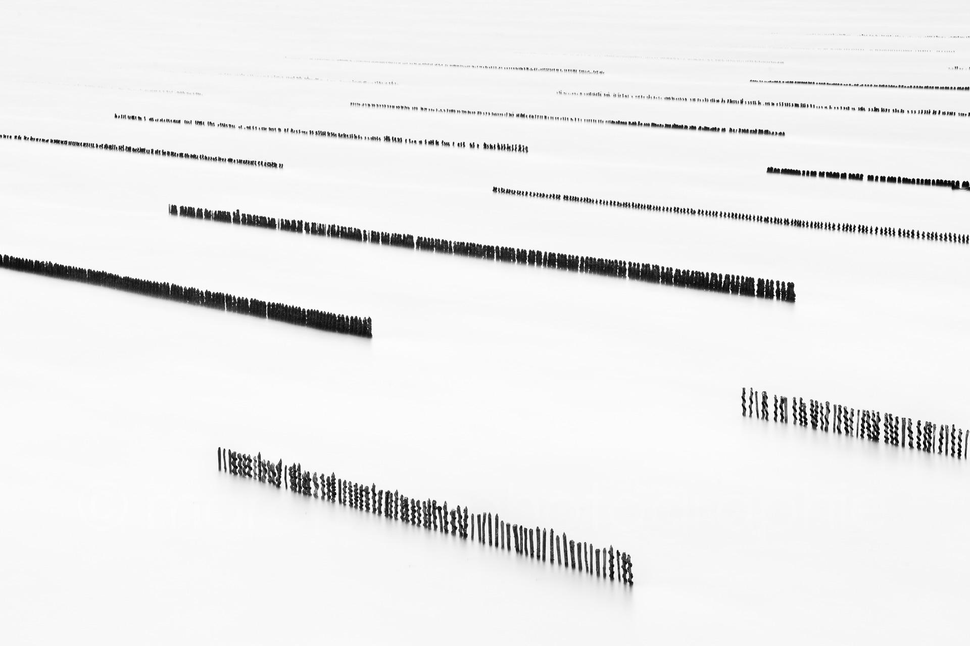 Sequence #2 (  2010   )   Edition : 37x56cm (ed°/8) & 60  x90cm (ed°/8)