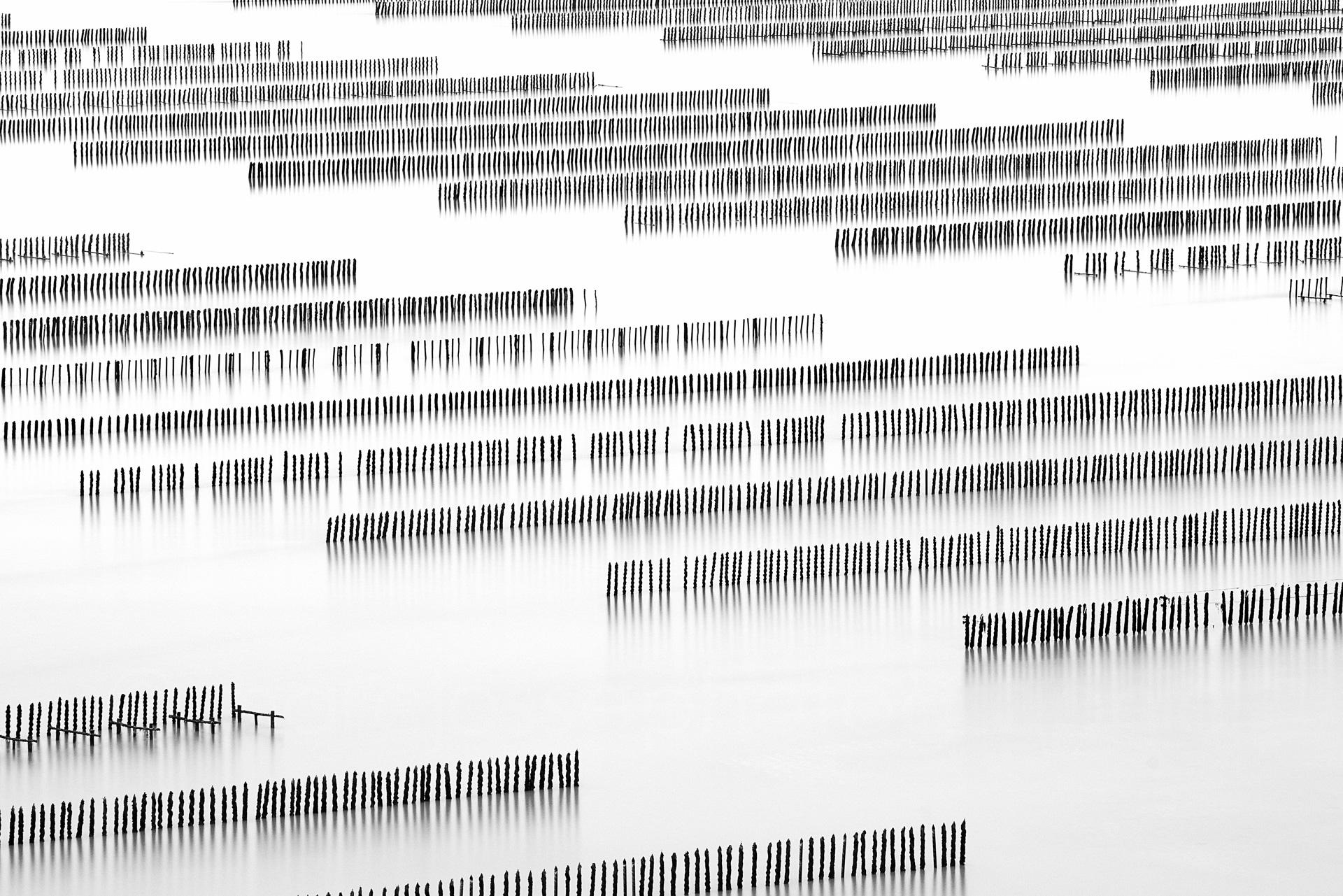 Sequence #5  (  2011   )   Edition : 37x56cm (ed°/8) & 60  x90cm (ed°/8)