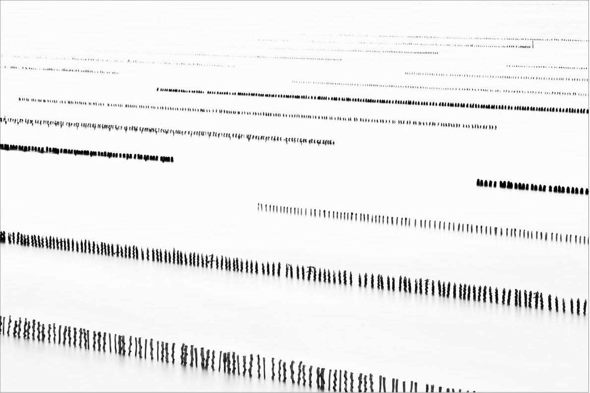 Sequence #17  (  2015   )   Edition : 37x56cm (ed°/8) & 60  x90cm (ed°/8)