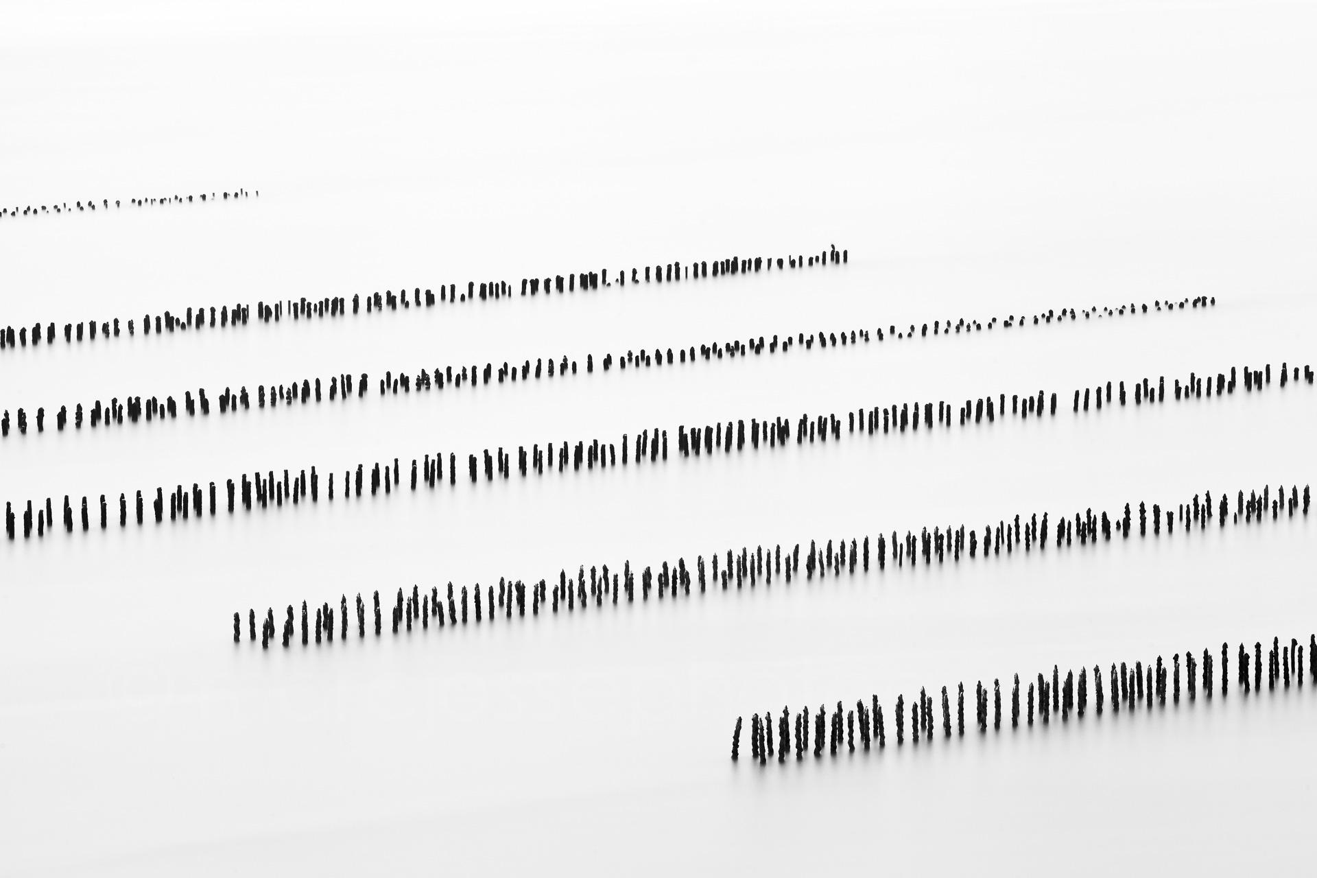 Sequence #4  (  2012   )   Edition : 37x56cm (ed°/8) & 60  x90cm (ed°/8)