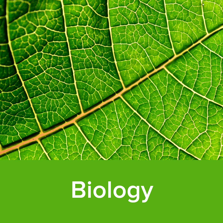 Biology.jpg