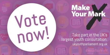 Make-Your-Mark-Vote-Now-460x232.jpg