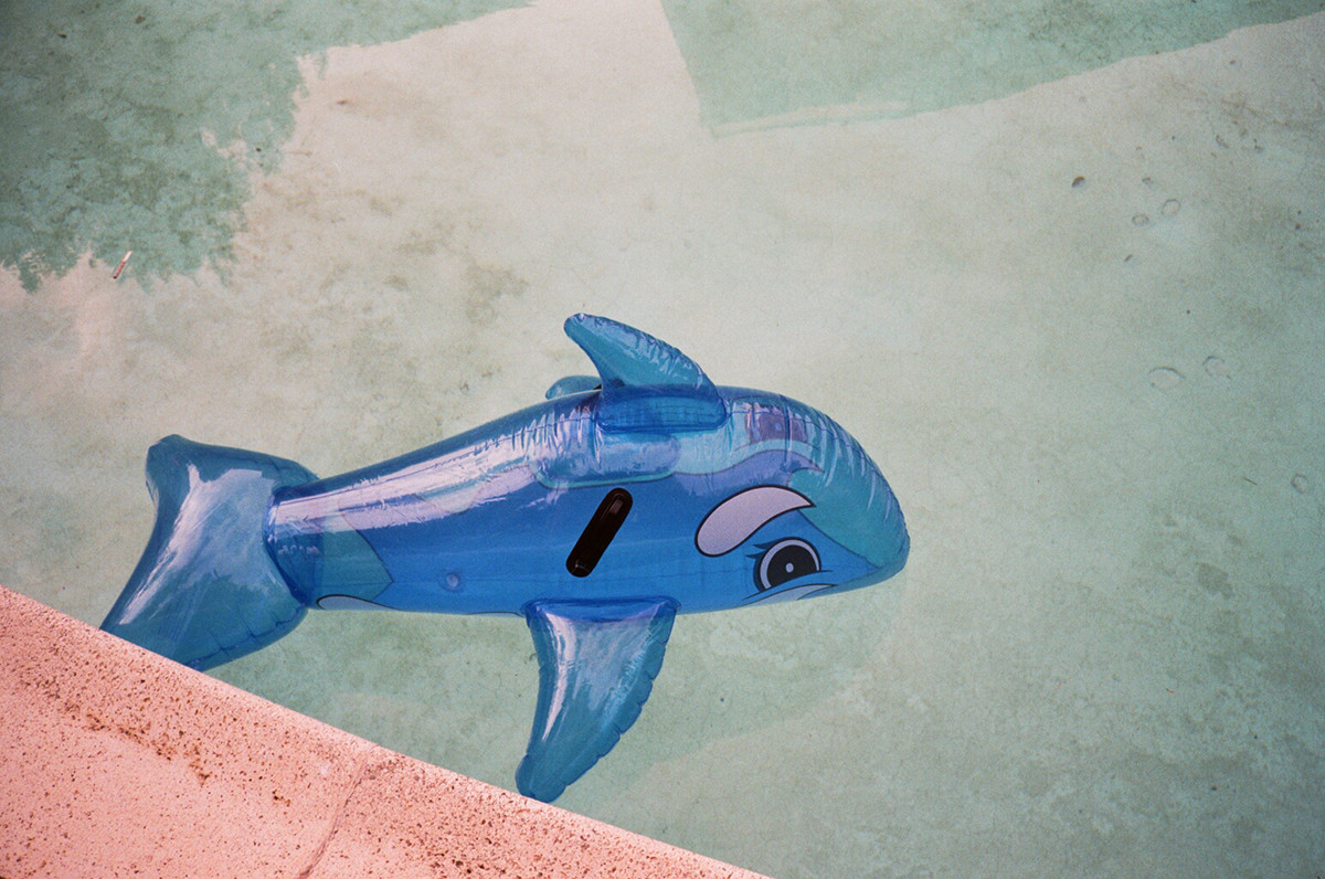 """""""Whale in Pool"""" by Gia Coppola"""