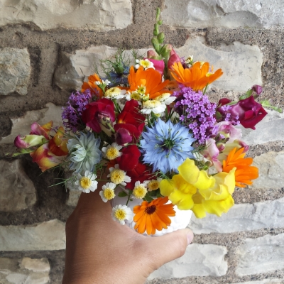 A pretty posy made with these easy to grow flowers!