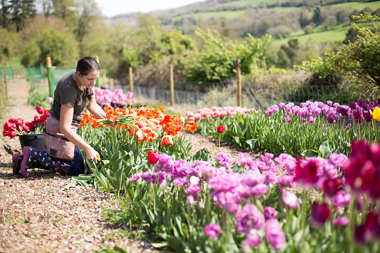 Pipley flower farming course workshop.jpg