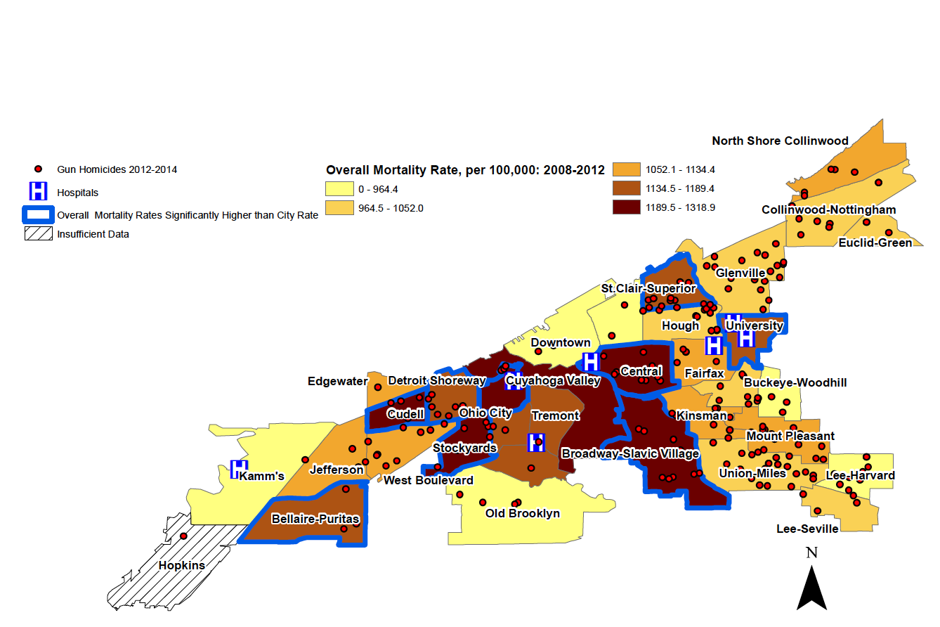 Click here to view a full PDF of Cleveland's overall mortality rate with respect to gun homicides.