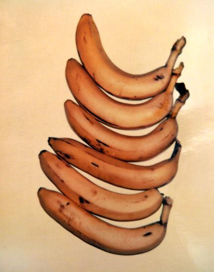 Bananas,  1978. Polaroid, 4 x 3.25 in.