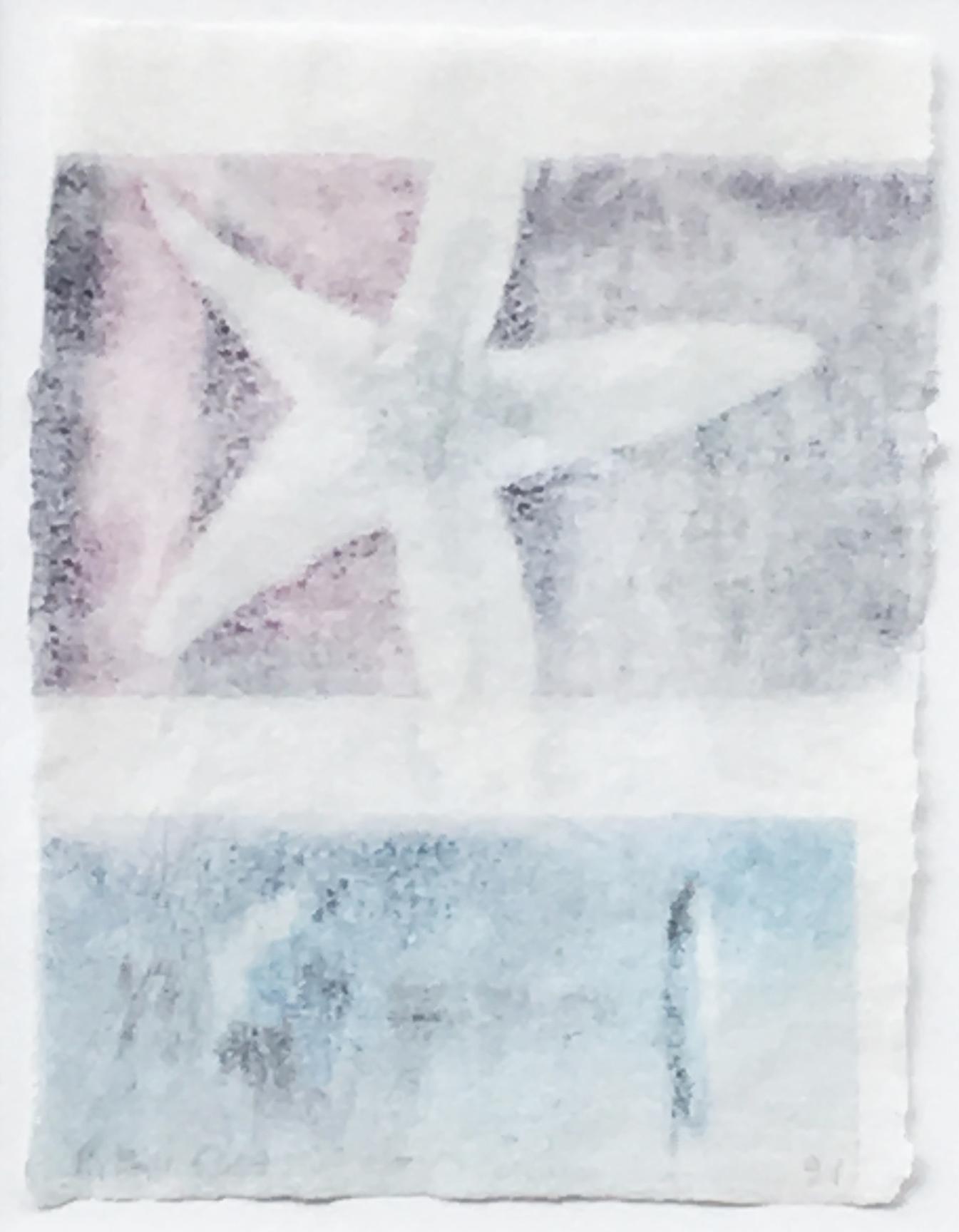 Untitled (Starfish), 1991. 91D.015.