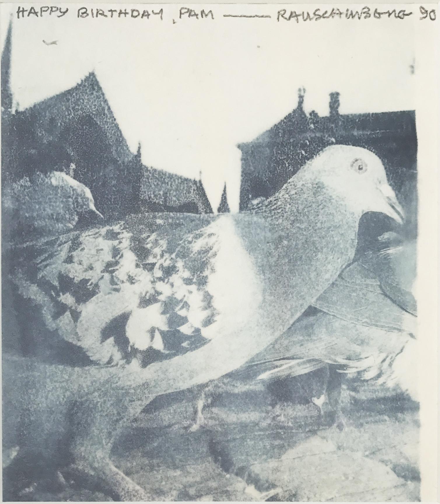 Untitled (Pigeon), 1990. 90.D059.