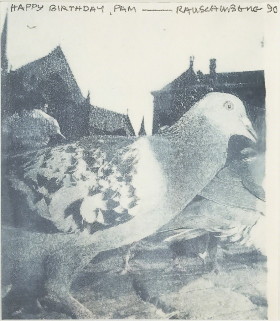 Robert Rauschenberg. Untitled (Pigeon).