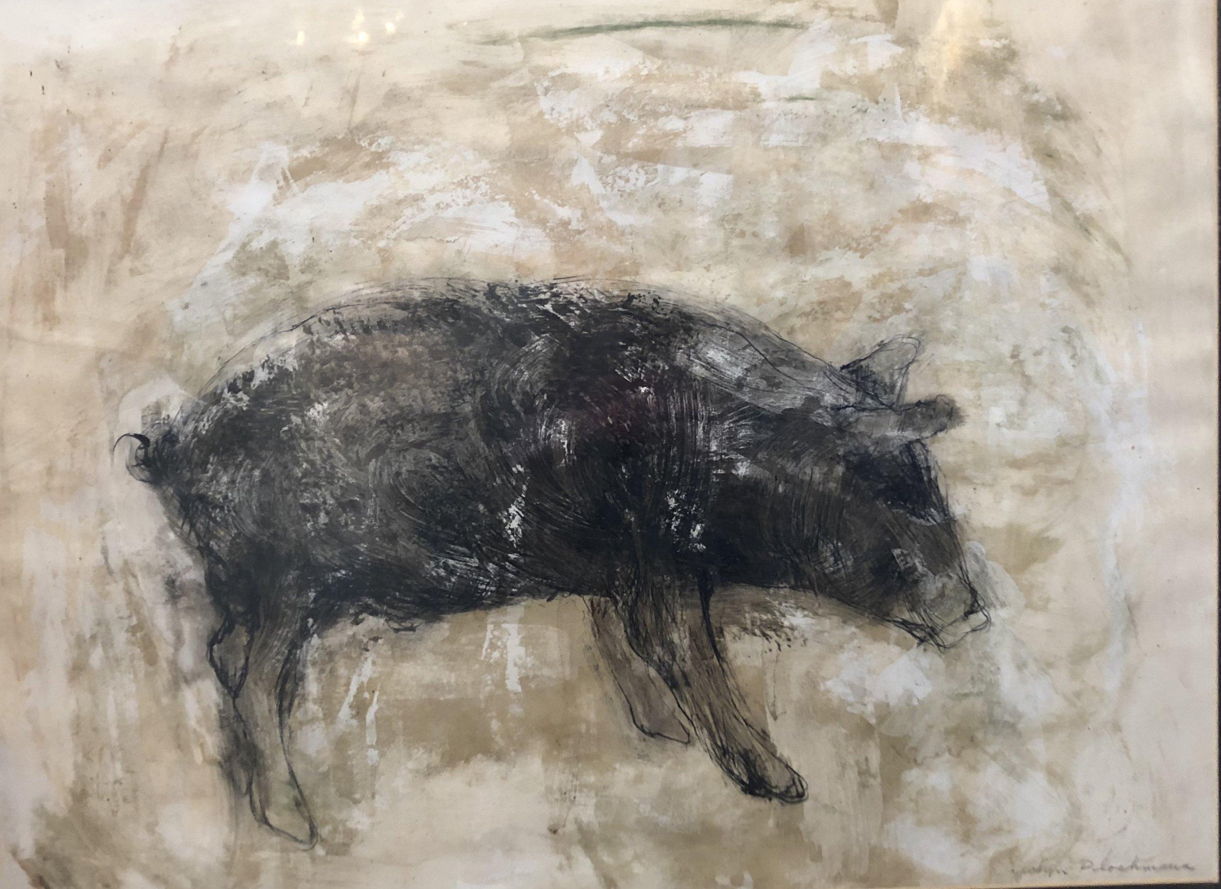 Carolyn Plochmann. Pig.