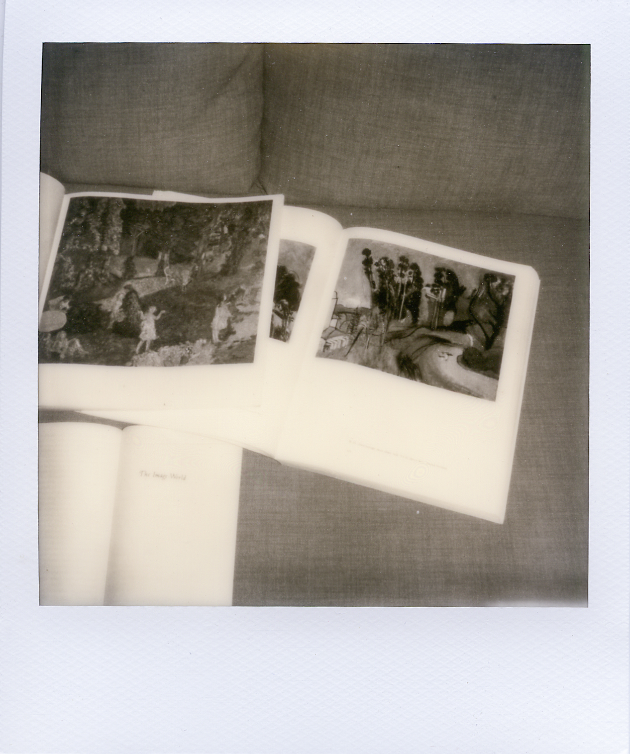 polaroid research 2002.jpg