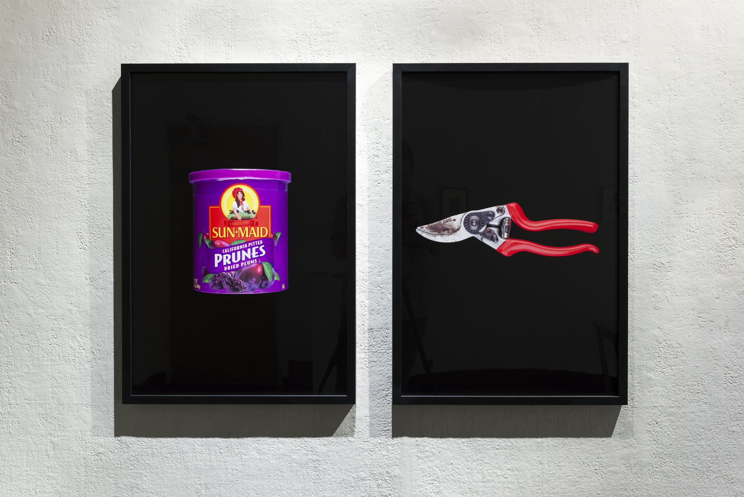 "Sun-Maid California Pitted Prunes Dried Plums / Pruning Shears, Kirkland (2019) 20""x30"" / 20""x30"""