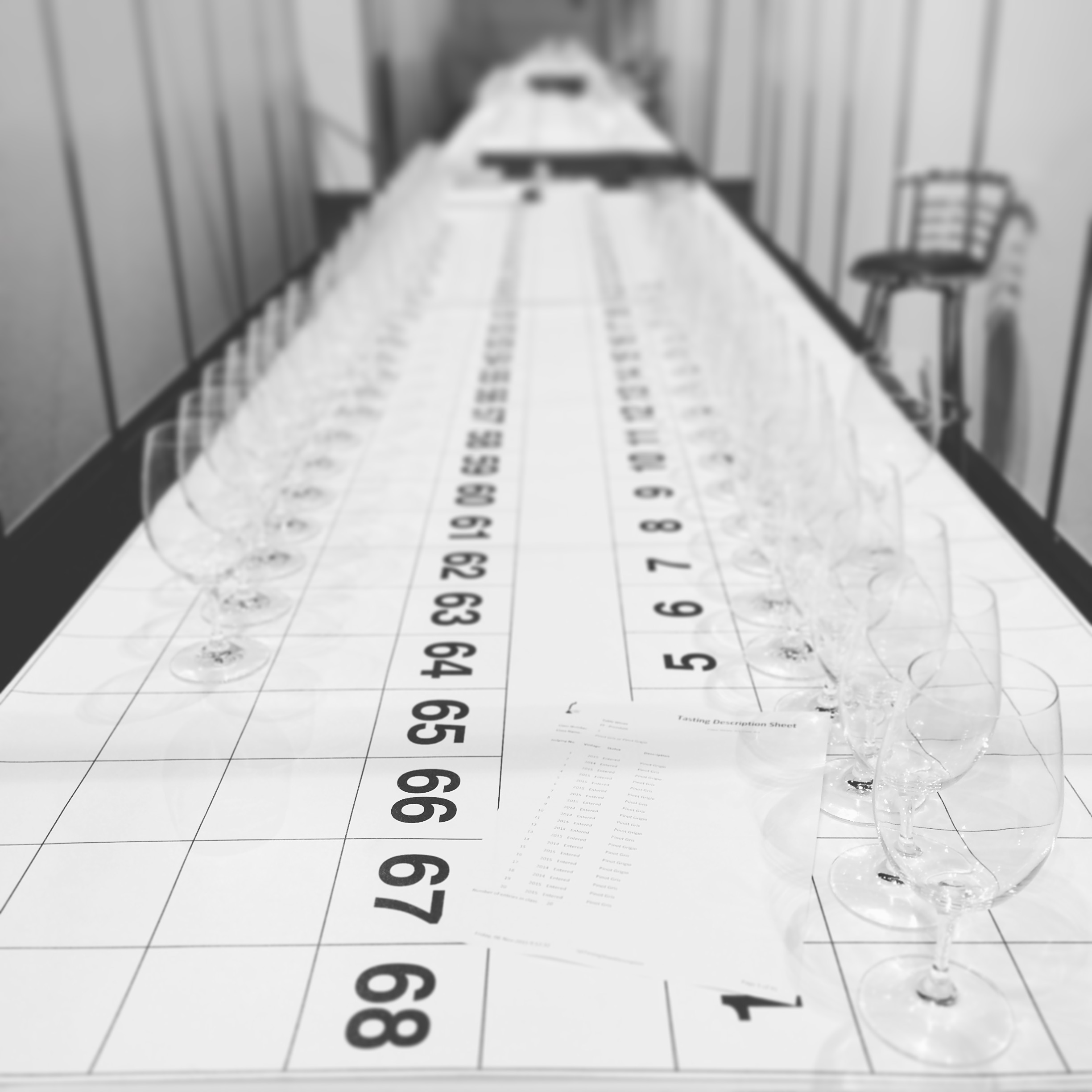 Glasses lined up at the National Wine Show, Canberra