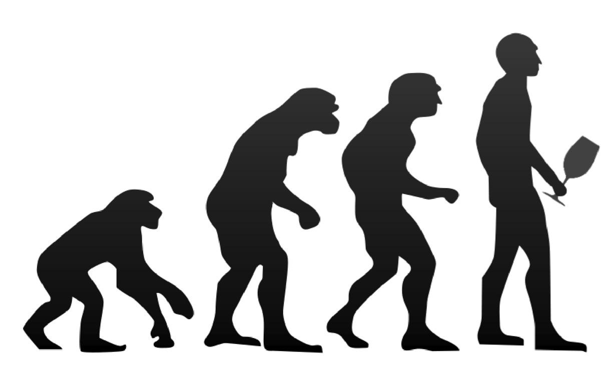 evolution of wine drinker.jpg