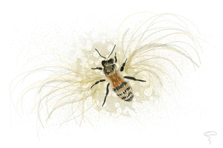 Watching Maya the bee… so got inspired.