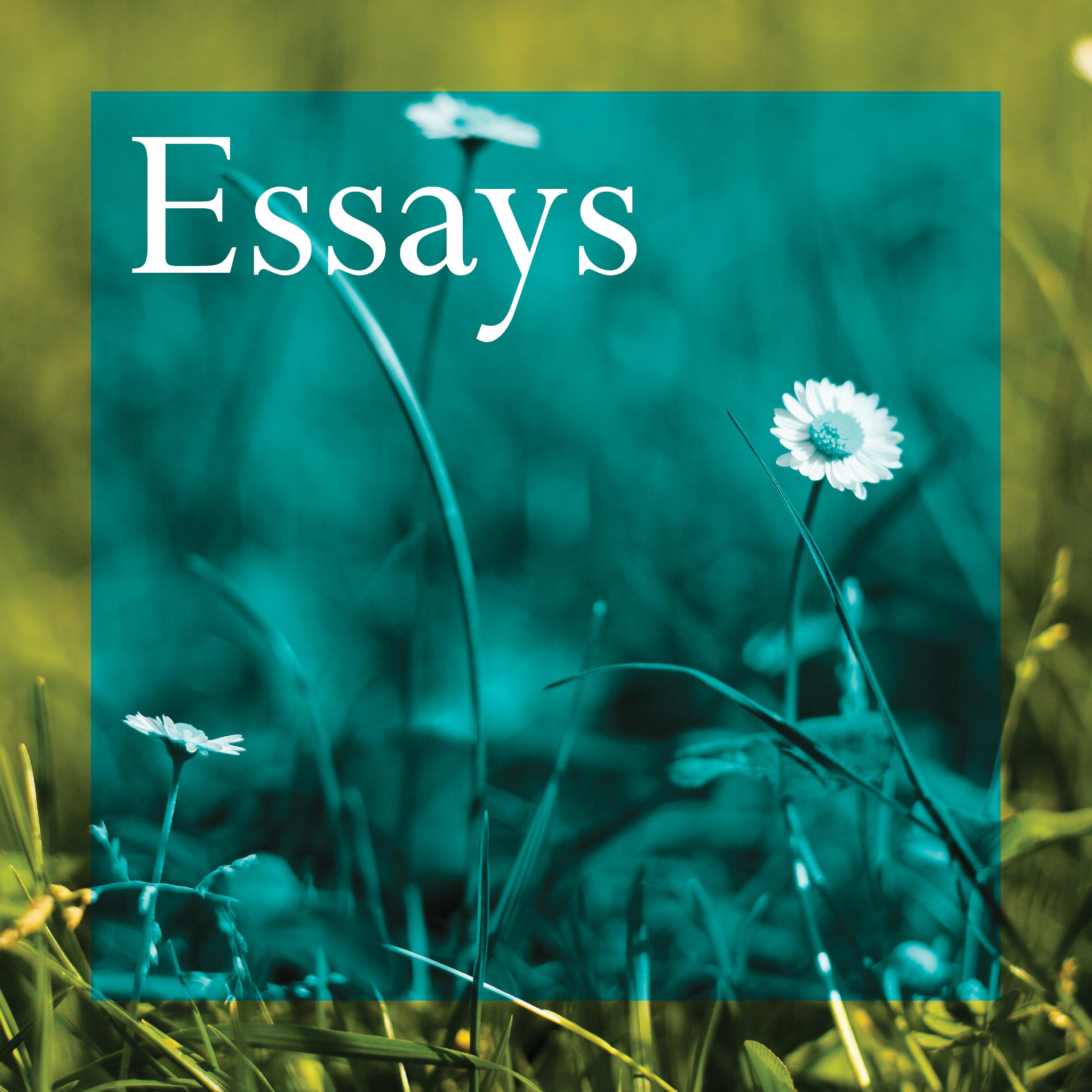 essaysfinal.jpg