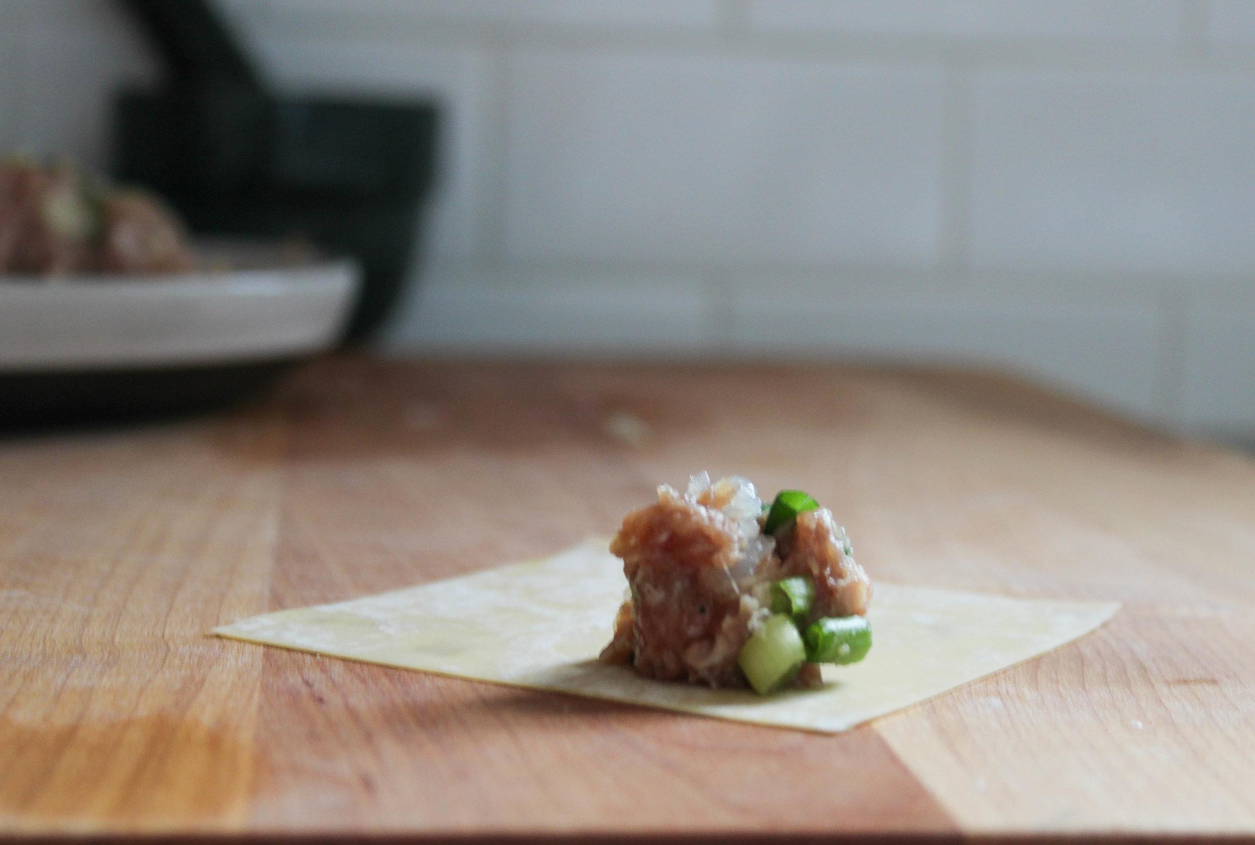 pork and shrimp dumpling rolling