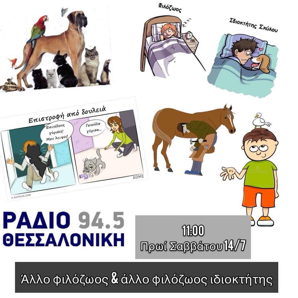 FB_IMG_1531493674874.jpg
