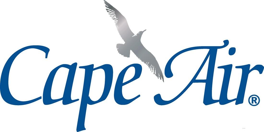 Cape Air Logo Blue  Silver - JPG.jpg