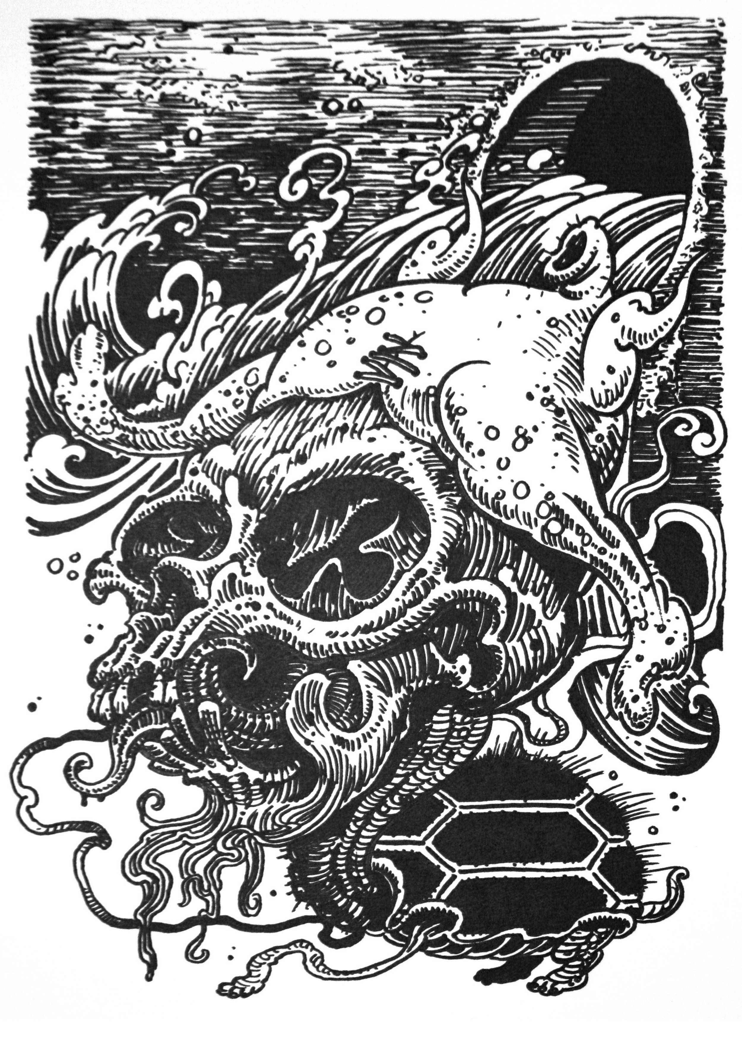 """Chickenhead.  2009 - ink on paper. 12"""" x 9""""."""