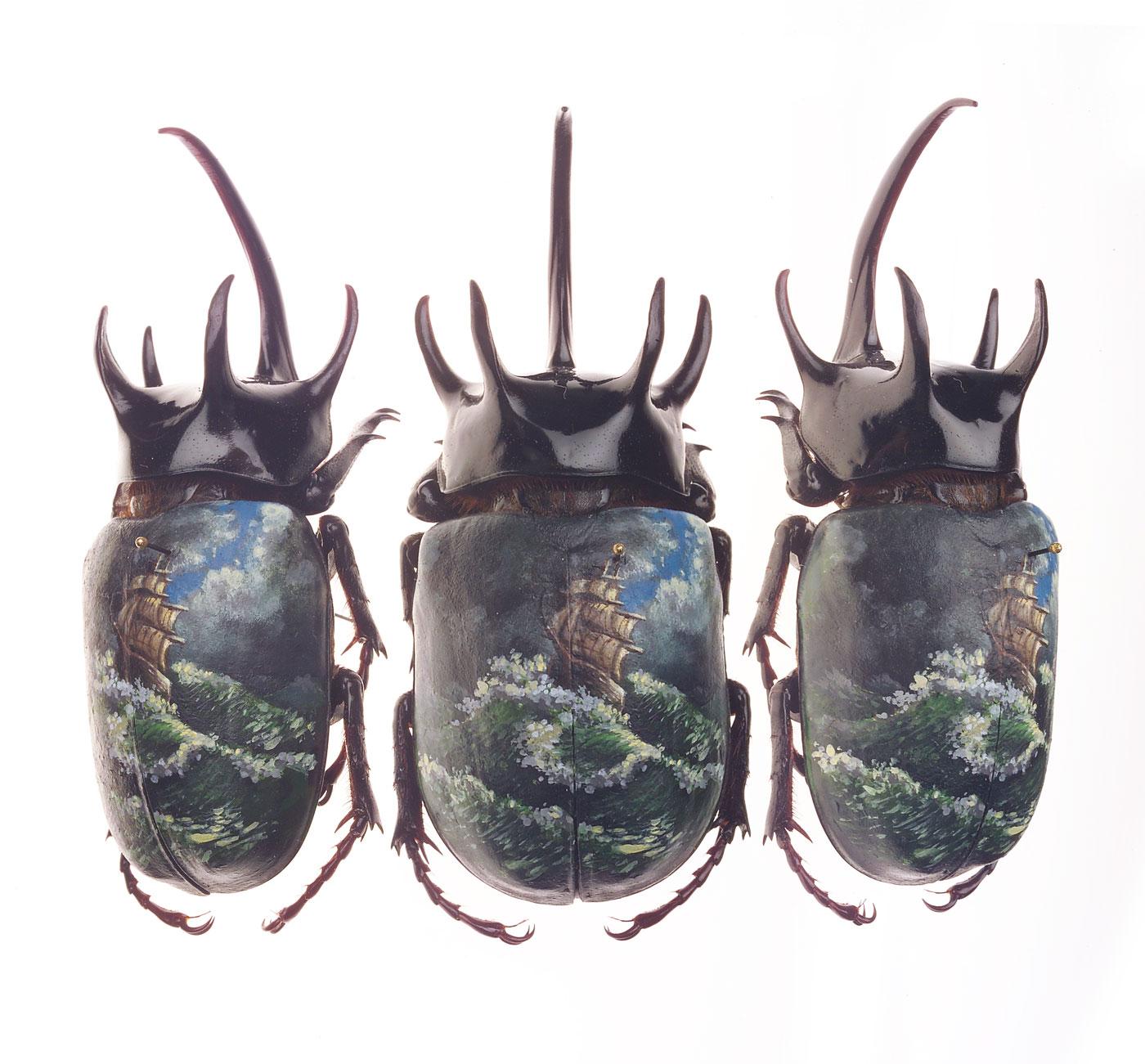 """High Seas.  2005 - acrylic on beetle. 3"""" x 1.5""""."""