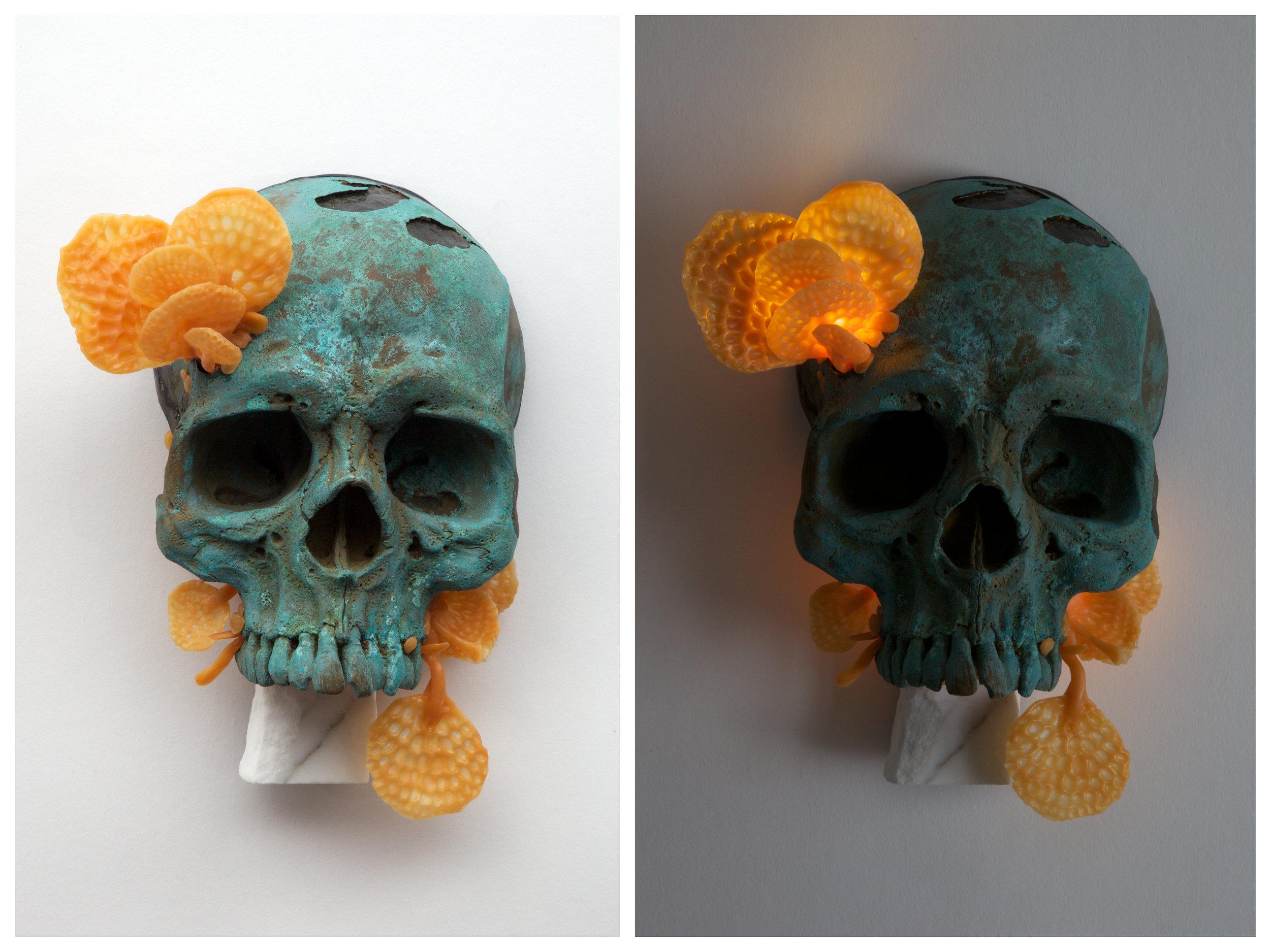 Favolaschia calocera. 2016-cold cast brass, plastic, carara marble, LED lights