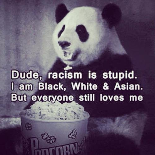 rasist-panda.jpg